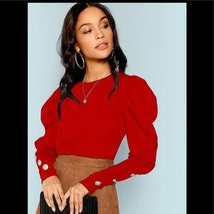 Puff Sleeve with Button Detail Sleeve